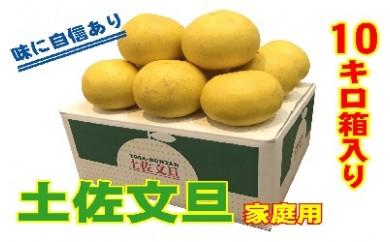 土佐文旦(家庭用10kg)