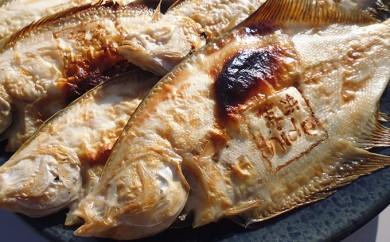 [№5921-0016]【魚屋hide】 鳥の海の焼きがれい (大:8~11枚)