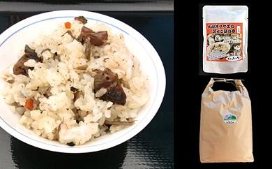 3.特別栽培米こしひかりとさざえご飯の素セット
