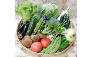 旬の野菜ボックス【毎月10セット限定】