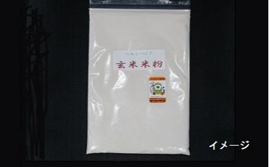 B666 河内農産 玄米粉400g