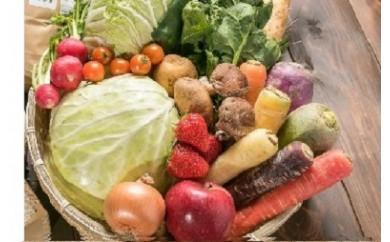 いっぺ北上の野菜食ってけでぇ~ たっぷり野菜のセット(6回)