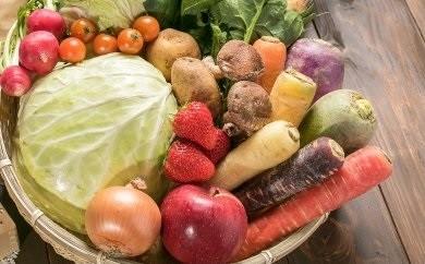 いっぺ北上の野菜食ってけでぇ~たっぷり野菜セットB