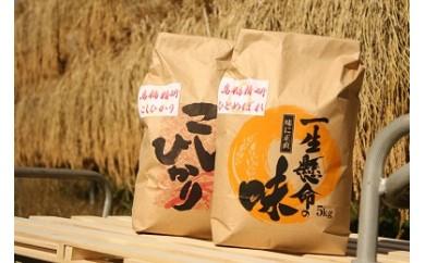 精研さんのお米 5kg×2 減農薬・有機肥料使用 健康志向の方向け