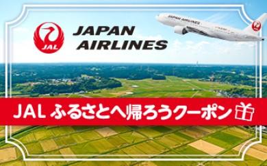 【JAL01】【沖永良部島 和泊町】JAL ふるさとへ帰ろうクーポン(4,000点分)【10000pt】