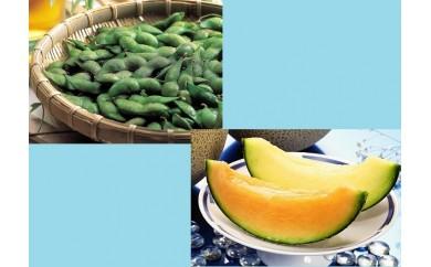 N30-401 庄内砂丘メロン(2玉)と殿様のだだちゃ豆(1kg)のセット