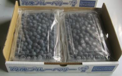 AC18 冷凍ブルーベリー【20p】
