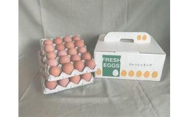 A102 【数量・期間限定】 昔ながらの庭先卵40個セット