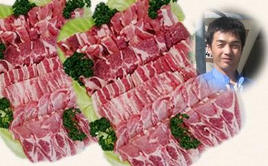 30-B09 南信州くりん豚もりもり焼肉セット