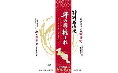 AB02 環境にやさしい特別栽培米コシヒカリ「丹の国穂まれ」【10000pt】