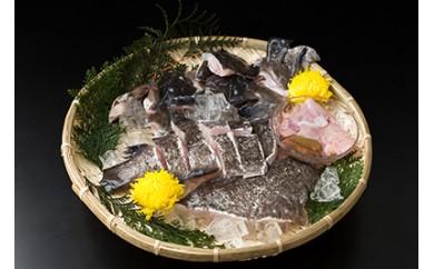 C-016 対馬の味便り「唐崎岬で育てた高級魚クエの鍋セット」1.5kg