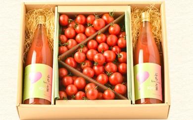 29-A35 真っ赤に輝くミニトマト『プリンセス希』堪能セット