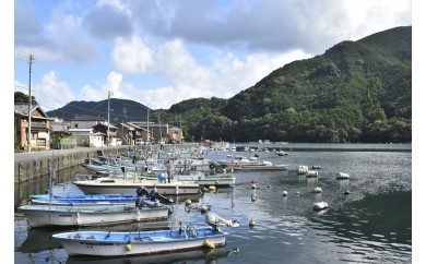 KG-① 1泊朝食おかあさん付き漁師町の暮らし体験プラン