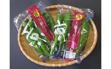 ☆6月受付開始☆ AB01 甘い!美味い!辛くない!京のブランド産品「万願寺甘とう」【10000pt】