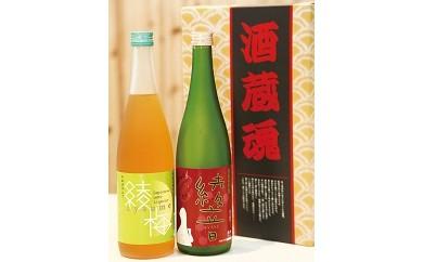 AA05 梅酒「綾梅」・純米吟醸「綾音」セット【15000pt】