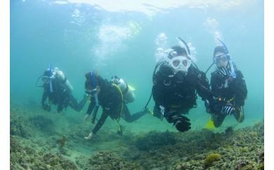 2-33気軽に水中散歩~体験ダイビング~(まぐろ丼付き)