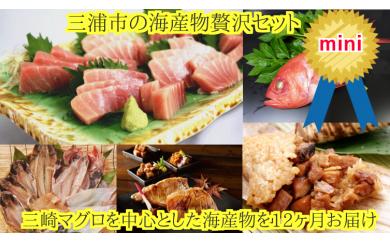 50-9三浦市の海産物定期便 セットmini