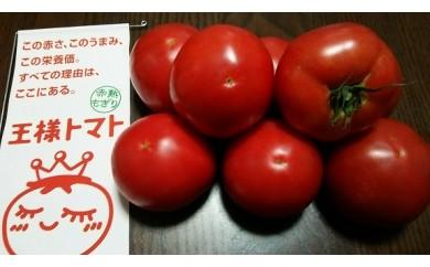 1-15王様トマト贅沢セット