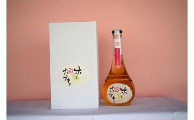 特区の本格梅酒 ホーホケキョ 500ml
