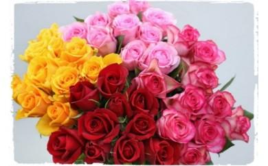 OKM03 日本一に輝いた阿波のバラをお届け! ローズガーデン徳島 阿波バラ40本 寄付額21,000円