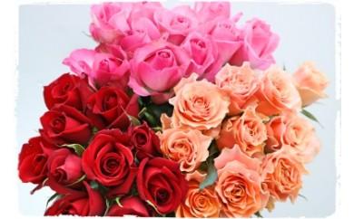 OKM02 日本一に輝いた阿波のバラをお届け! ローズガーデン徳島 阿波バラ30本 寄付額16,000円