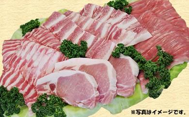 30-C01 南信州くりん豚 がっつりパーティーセット