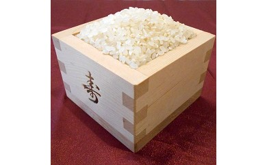 AA10 綾部産コシヒカリ10kg(白米)【15000pt】