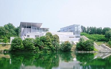 [№5789-0143]岡崎市美術博物館年間パスポート(Museum-Pass)