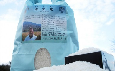 [№4631-1013]【29年度新米予約】こんちゃん農園の水主米 10kg