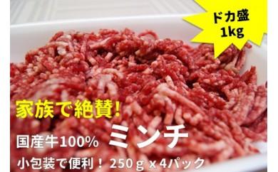 A207 国産牛100%ミンチ 1kg(250gx4パック)