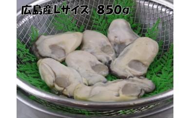 B253 国産最高級牡蠣Lサイズむき身 約850g