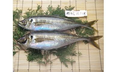 No.336 関あじ(鮮魚)2尾セット【30pt】