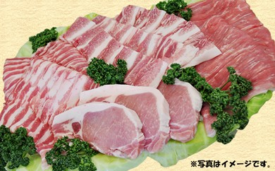 30-D01 南信州くりん豚 半頭食べ尽くしセット