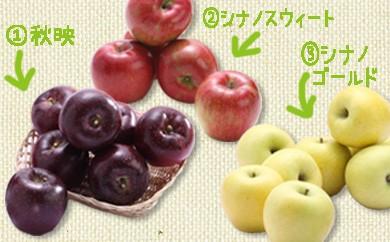 30-B07 りんご3兄弟食べ比べリレーギフト