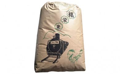 [№4631-1018]【平成29年度新米予約!!】高原さんの福栄米 (玄米)30kg