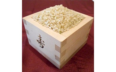 AA11 綾部産コシヒカリ10kg(5分づき)【15000pt】