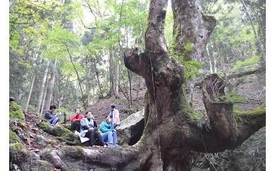 AY03 農家民宿宿泊と国定公園の森散策【30000pt】