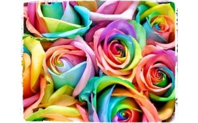 OKM06 日本一に輝いた阿波のバラをお届け! ローズガーデン徳島 レインボーローズ5本 寄付額18,000円