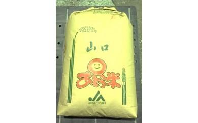 29C-024 特別栽培米阿東産こしひかり玄米60kg【30,000pt】