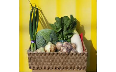 D-112 泉南特産 季節の野菜の詰め合わせ