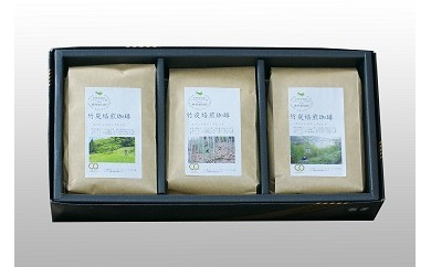 《B1-052》森をまもるコーヒー!竹炭焙煎珈琲 3袋セット(豆)