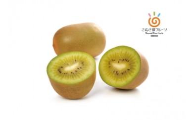 C-6高級フルーツ さぬきキウイっこ
