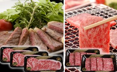 29-D-⑭ JAそお鹿児島黒牛サーロインステーキ焼肉セット