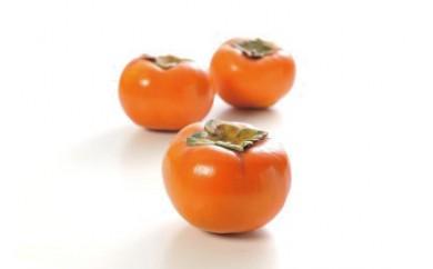 B-24季節のフルーツ 富有柿