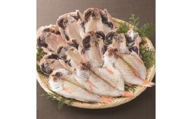 日本海西部産 開きのどぐろ干物