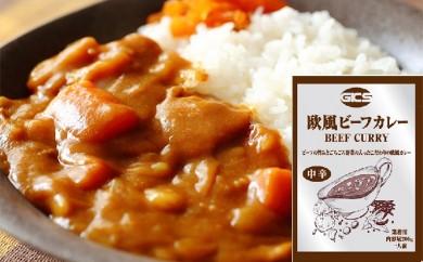 [№5787-0120]欧風ビーフカレー 30食