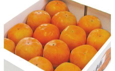 B-22季節のフルーツ 早生富有柿