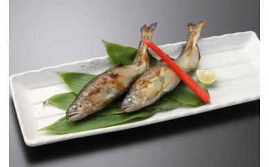 鮎の塩麹漬け 2尾×6袋