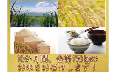 S9931‐00‐99 こでらんね逸品コース(特別栽培米×10か月)【11月~8月】