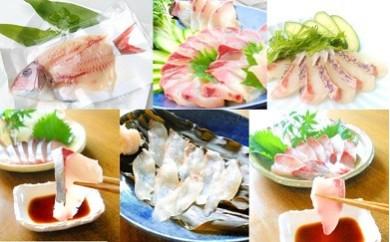(C-13)延岡産活〆鮮魚の豪華お刺身[6回月替わりコース]
